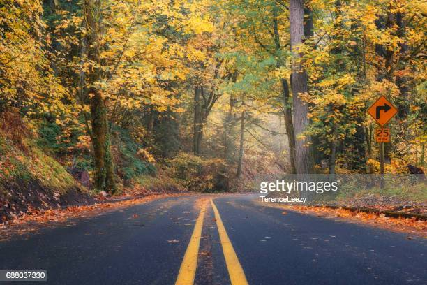 Fall foliage on a country highway, Oregon