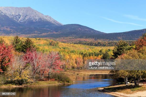 fall foliage - laura woods stock pictures, royalty-free photos & images
