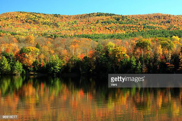herbstlaub in den connecticut river, vermont - indiana stock-fotos und bilder
