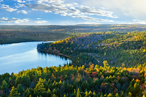 Fall forest and lake top view 695189940