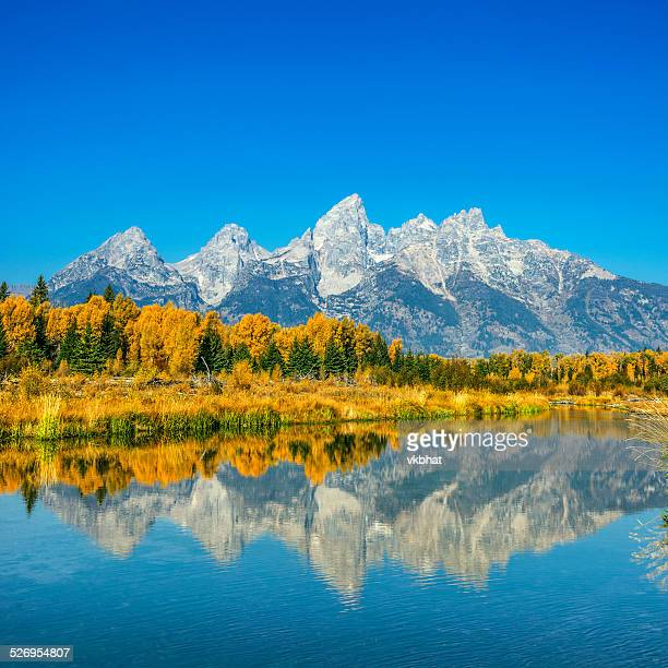 Fall glory at Grand Teton