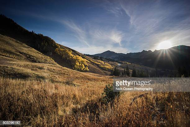 fall in colorado - stoking stock pictures, royalty-free photos & images