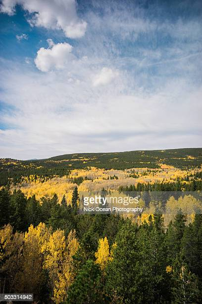 fall in marble county, colorado - stoking stock pictures, royalty-free photos & images