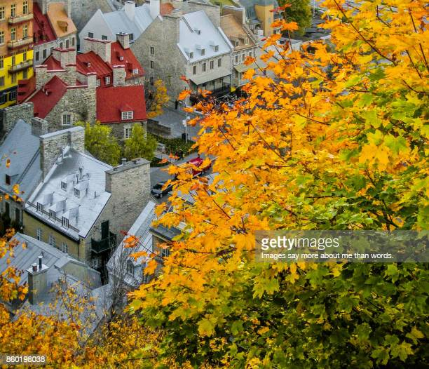 Fall in Quebec City - View from high angle.