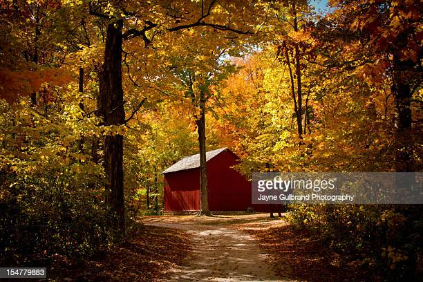 fall in wisconsin! - iowa_county,_wisconsin stock pictures, royalty-free photos & images