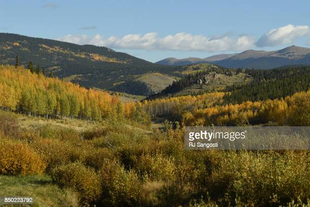 Fall is arriving along the Colorado Trail on Kenosha Pass on September 20, 2017 in Park County, Colorado.