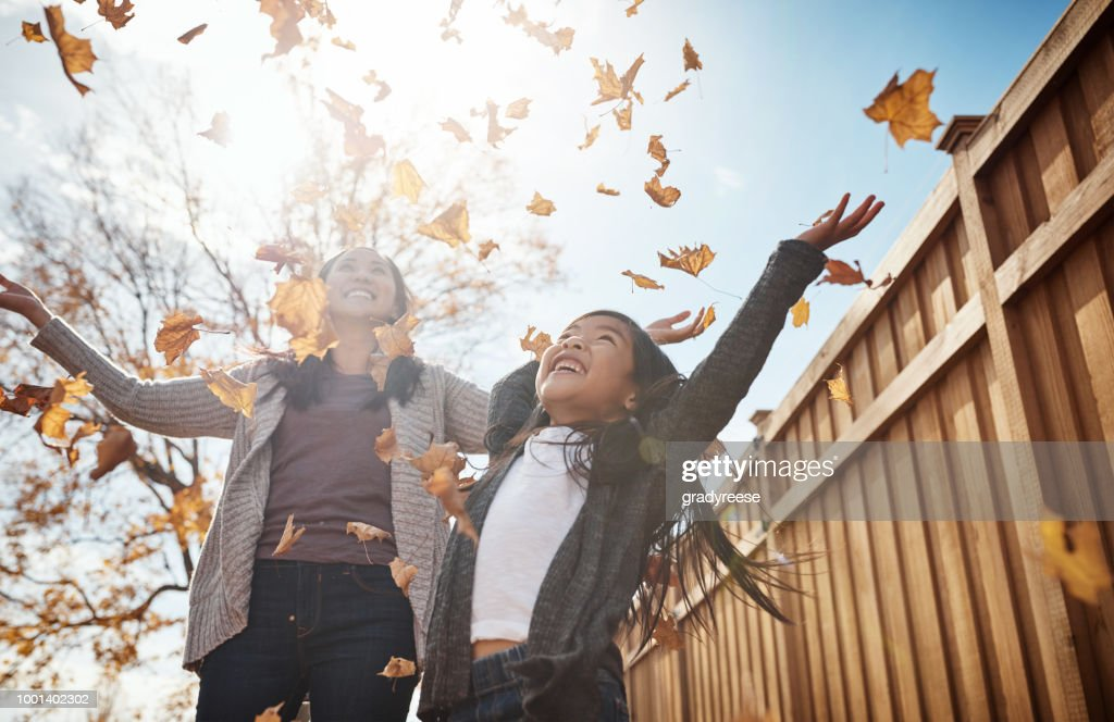 Fall is the best season of all : Stock Photo