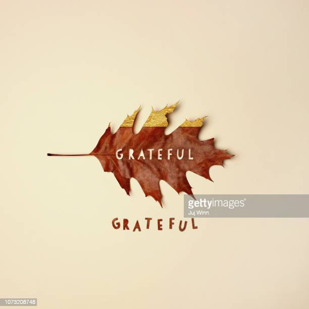 Fall leaf with text cutout reading grateful
