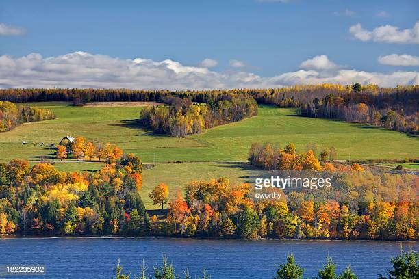 Fall Leaves and Green Fields on the St. John River