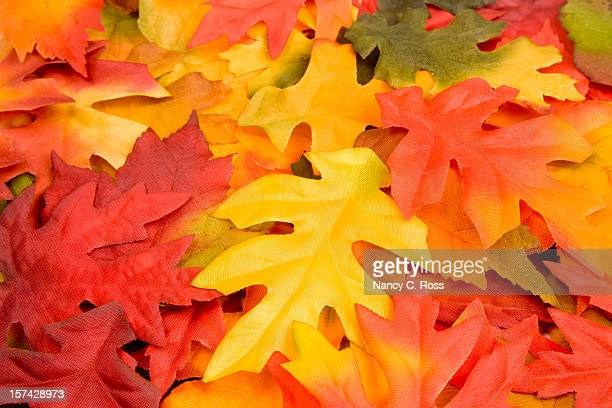 Fall Leaves, Autumn, Harvest, Natural-Pattern, Colorful Background, Decoration