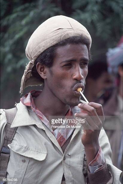 Fall of Addis Ababa Fighting of the FDRPE Revolutionary democratic Forehead of the Ethiopian people On 1991 FDM255 encore 2