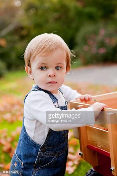 fall - menino loiro olhos azuis imagens e fotografias de stock