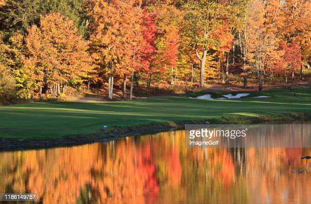 fall pond reflection - turf stock pictures, royalty-free photos & images