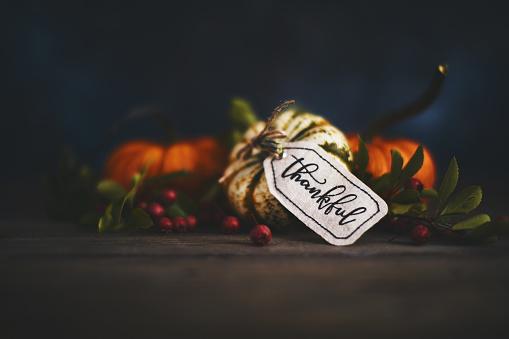 Fall pumpkin arrangement with message of Thanks 1053140002