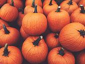 Fall Pumpkins Background