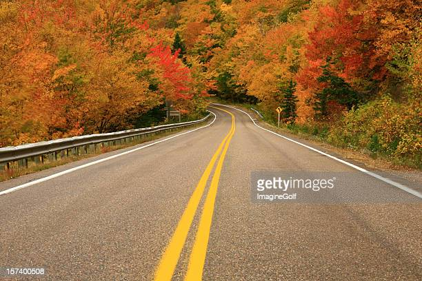 fall road - cape breton island stock pictures, royalty-free photos & images