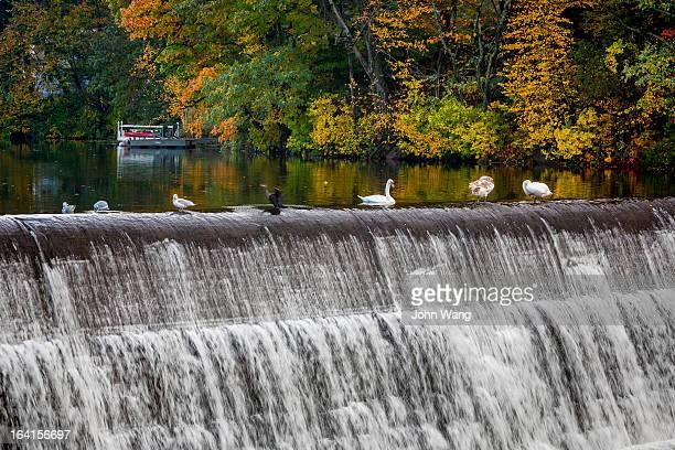 fall scene in connecticut small town - ニューヘイブン ストックフォトと画像
