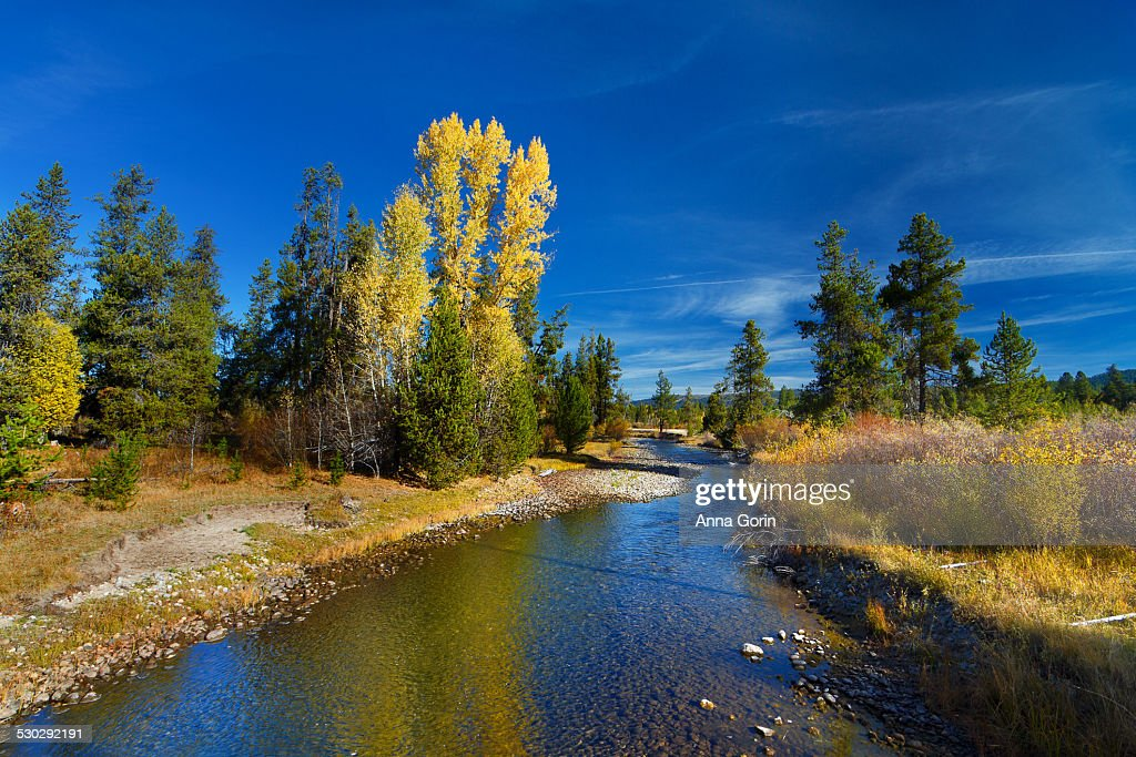 Idaho Fall Scenery
