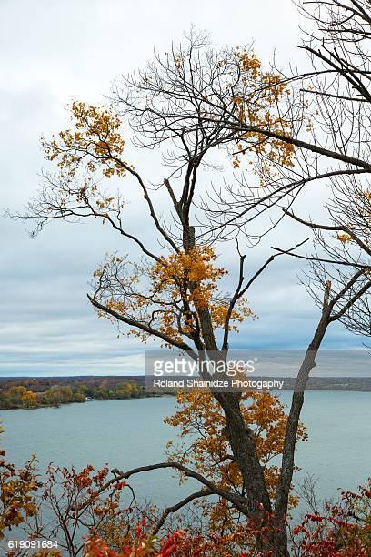 fall scenes in prince edward county - contea di prince edward ontario foto e immagini stock