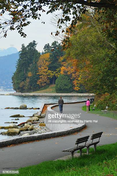 Fall Stanley Park