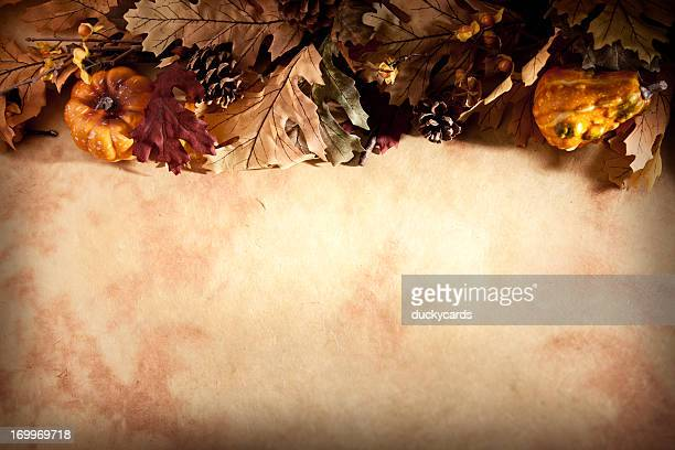 fall thanksgiving background with leaves and pumpkins - thanksgiving background stock photos and pictures