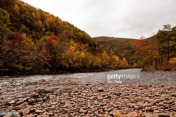fall trees along river - jim thorpe pennsylvania stock photos and pictures