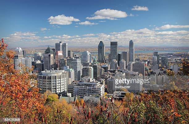 Fall trees with Montreal skyline in background