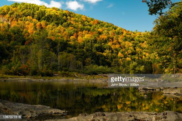 fall white river serenity, hartford, united states - hartford connecticut stock pictures, royalty-free photos & images