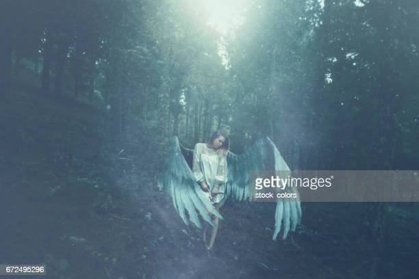 fallen angel in the forest