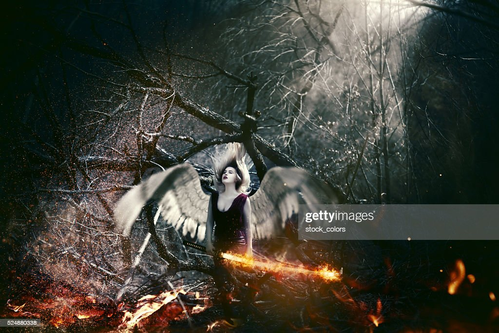 fallen angel : Stock Photo
