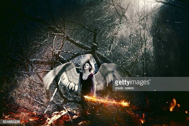 fallen angel - hell stock pictures, royalty-free photos & images
