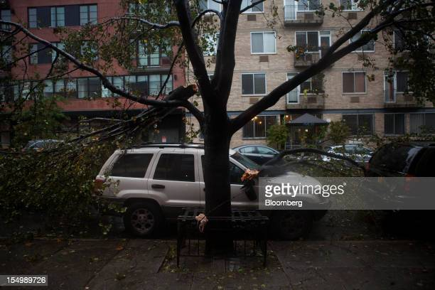 Fallen branches lay on top of a car in the Gowanus neighborhood of Brooklyn in New York US on Monday Oct 29 2012 Hurricane Sandy the Atlantic's...