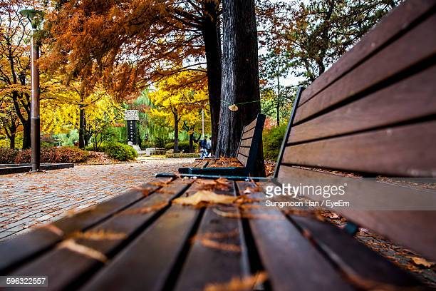 Fallen Leaves On Bench In Park During Autumn
