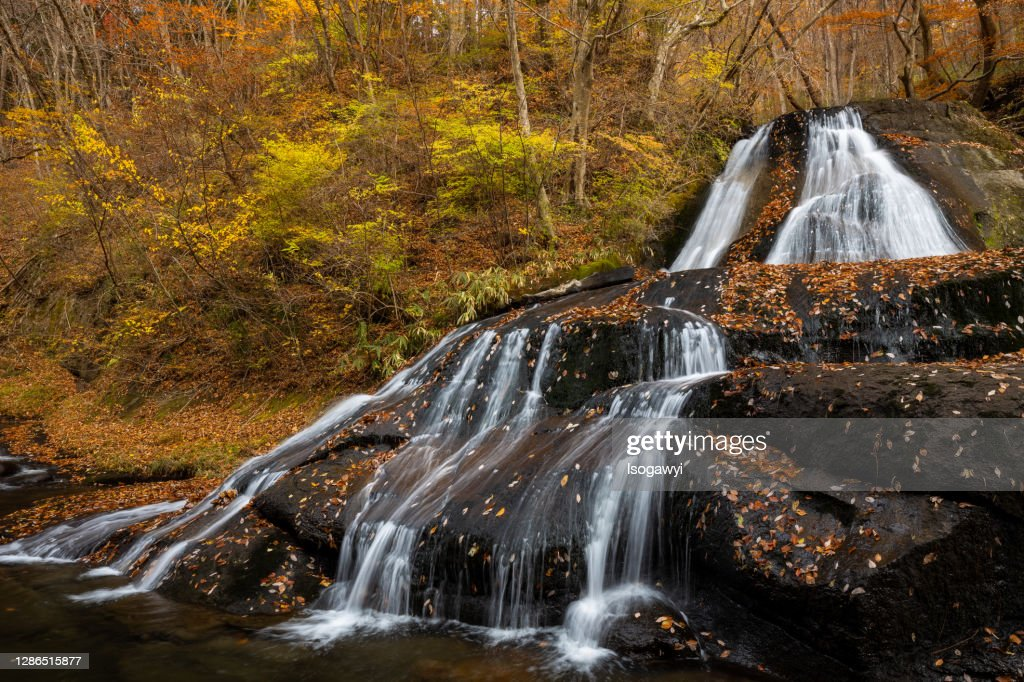 Fallen Leaves On Waterfalls In Late Autumn : ストックフォト