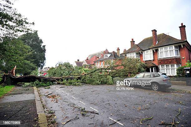 A fallen tree blocks a road due to the overnight storm in Brighton southern England on October 28 2013 Britain faced travel chaos on October 28 and...
