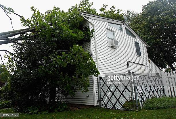 A fallen tree downed by Hurricane Irene is seen leaning against a house on August 28 2011 in Westbury New York While Hurricane Irene has now been...