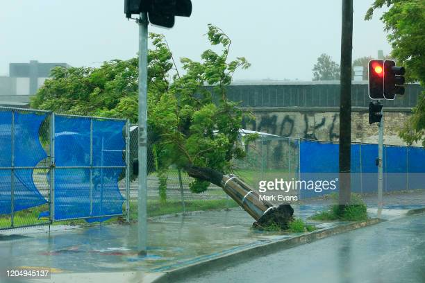 A fallen tree in Redfern on February 09 2020 in Sydney Australia The Bureau of Meteorology has forecast heavy rainfall across Sydney this weekend and...