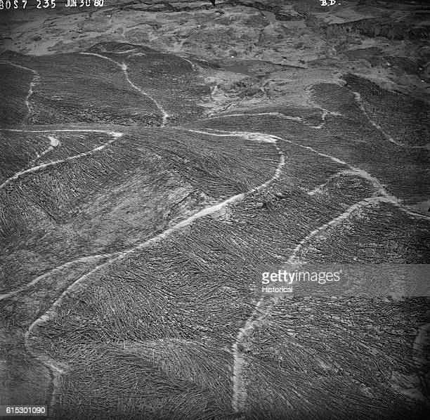 Fallen tree trunks, ash and mud fill the barren landscape to the northwest of Mount St. Helens a few weeks after its eruption on May 18, 1980. The...