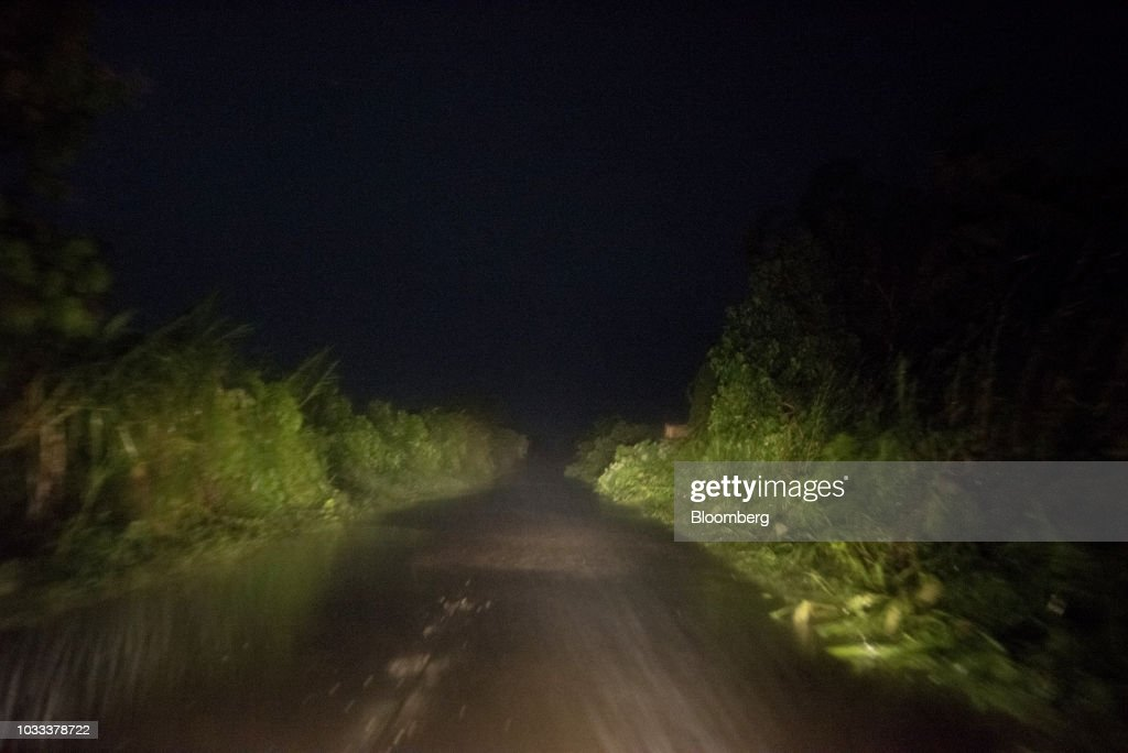 Fallen trees lie by the side of a road ahead of Typhoon Mangkhut's arrival in Tuguegarao, Cagayan province, the Philippines, on Friday, Sept. 14, 2018. Super Typhoon Mangkhut is expected to threaten Chinas Guangdong coastline, and Hong Kong, with a possible direct strike that may cause as much as $120 billion in damage and economic losses. Photographer: Carlo Gabuco/Bloomberg via Getty Images