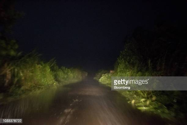 Fallen trees lie by the side of a road ahead of Typhoon Mangkhut's arrival in Tuguegarao Cagayan province the Philippines on Friday Sept 14 2018...