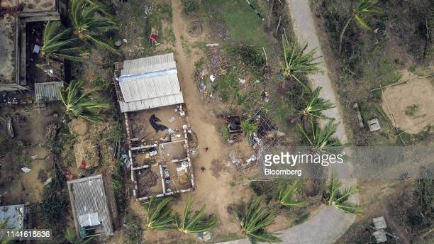Fallen trees surround damaged houses after Cyclone Fani passed in this aerial photograph taken in Bhuvan village in the Puri district of Odisha India...