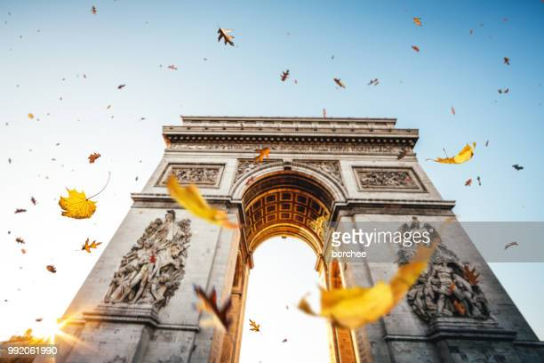 falling leaves in paris - champs elysees quarter stock pictures, royalty-free photos & images