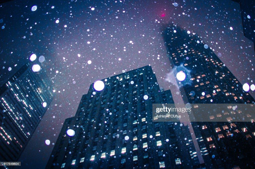 Falling Snow : Stock Photo