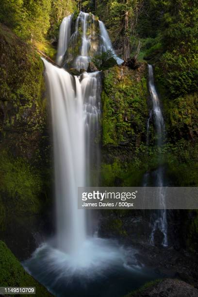 falls creek falls washington - carson california stock pictures, royalty-free photos & images
