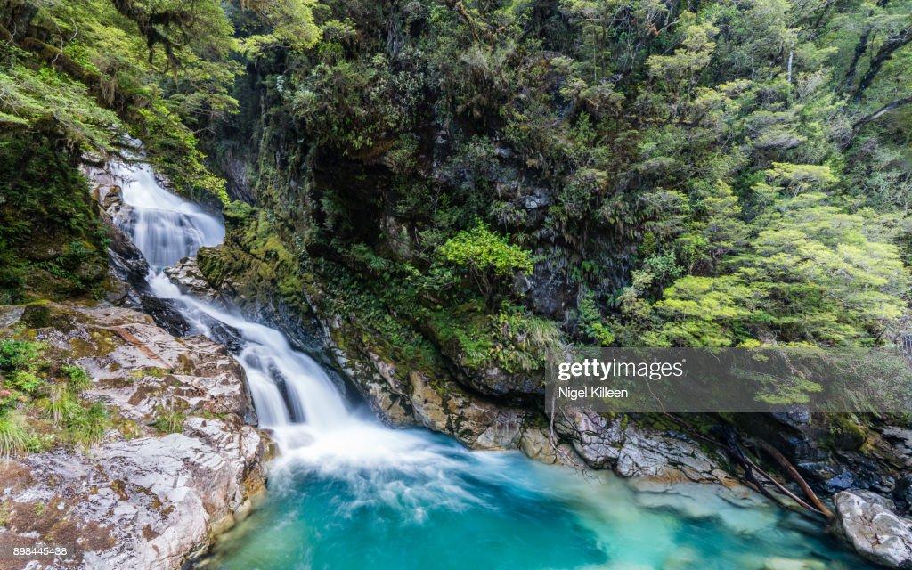 Falls Creek Fiordland National Park New Zealand High Res