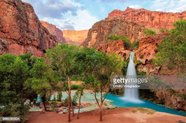 falls in grand canyon - supai stock photos and pictures