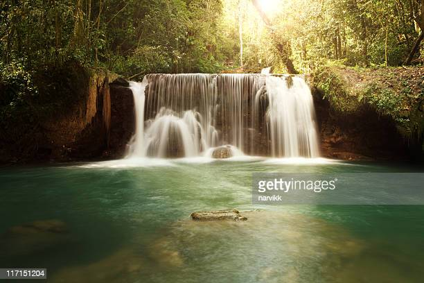 ys falls in jamaica - jamaica stock pictures, royalty-free photos & images