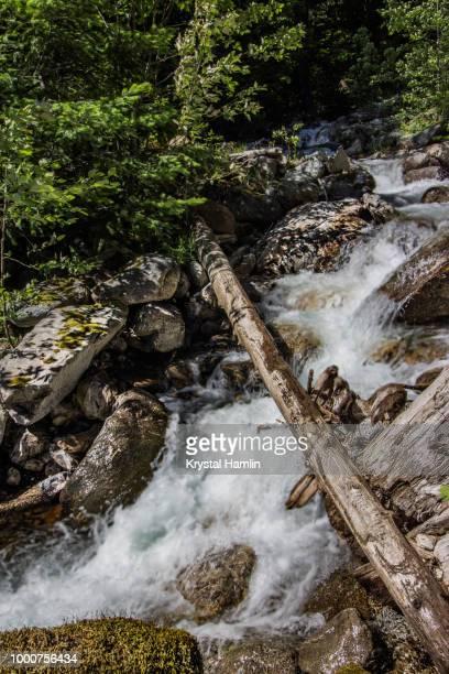 falls near diablo lake - diablo lake - fotografias e filmes do acervo