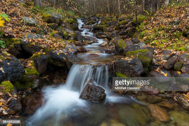 falls of fall - brook mitchell stock pictures, royalty-free photos & images