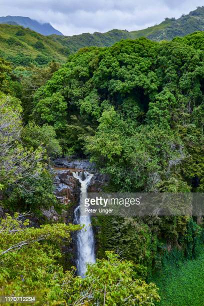 falls of makahiku waterfall at seven sacred pools,kipahulu visitor centre,maui,hawaii,usa - hannah brooks stock pictures, royalty-free photos & images